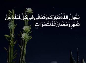 در محضر آیت الله حاج آقا مجتبی تهرانی (ره)