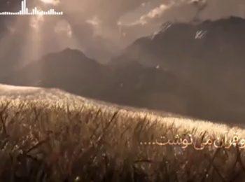 اگر خدا میخواست حضرت علی (ع)، امام باشد، نامش را در قرآن میآورد!