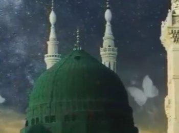 استوری | محمد (ص)، ای حسن خلقت بیبدل…
